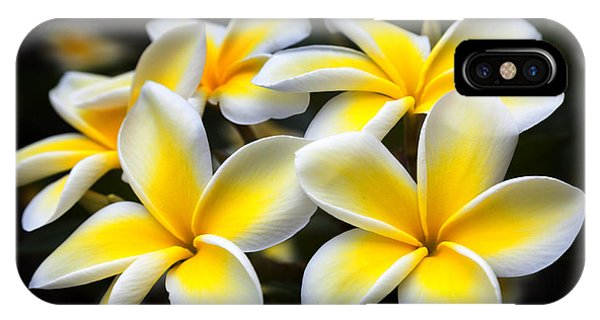 IPhone Case featuring the photograph Plumerias Canvas Print,photographic Print,art Print,framed Print,iphone Case,samsung Galaxy Case, by David Millenheft