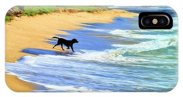 Kauai Water Dog IPhone Case