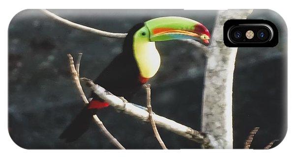 Keel-billed Toucan IPhone Case