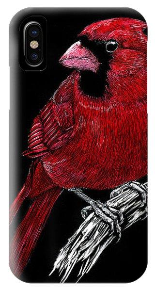 Kentucky Cardinal IPhone Case