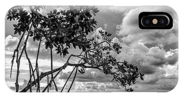 Key Largo Mangroves IPhone Case