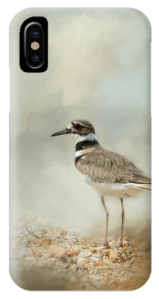 Killdeer iPhone Case - Killdeer On The Rocks by Jai Johnson