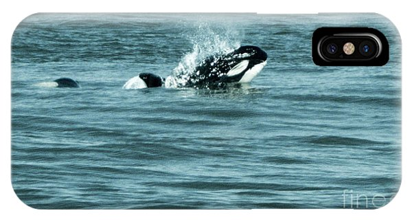 IPhone Case featuring the photograph Killer Whale by Wilko Van de Kamp