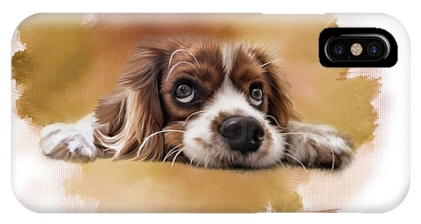 King Charles Cavalier IPhone Case