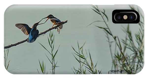 King Fishers  IPhone Case