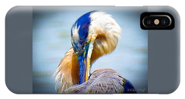King Of The River IPhone Case
