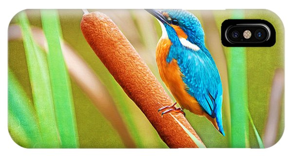 Kingfisher iPhone Case - Kingfisher by Laura D Young