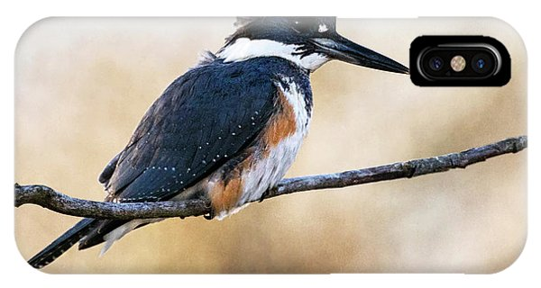 Kingfisher Listens IPhone Case
