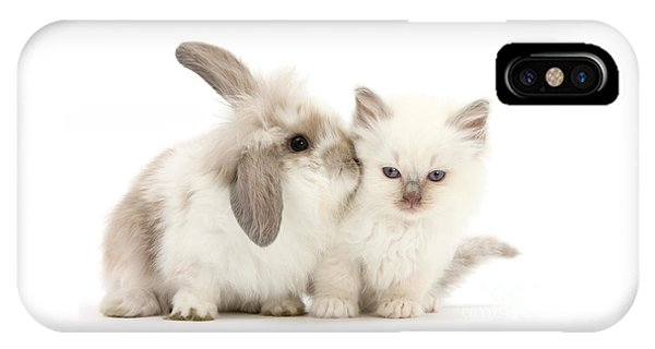 Kiss Her Fluffy Cheek IPhone Case