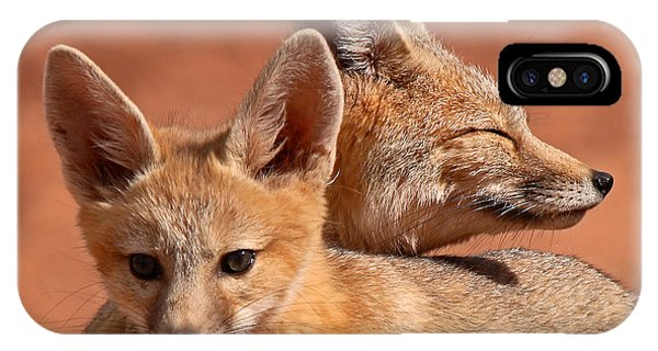 Kit Fox Pup Snuggling With Mother IPhone Case
