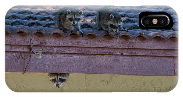 Kits On The Roof IPhone Case