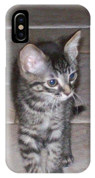 Martius Kitten IPhone Case