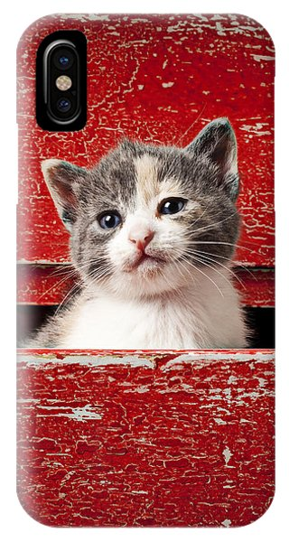 Babies iPhone Case - Kitten In Red Drawer by Garry Gay