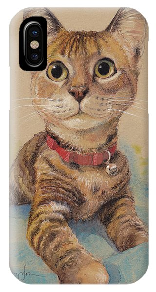 Kitten iPhone Case - Kitten On The Loose by Tracie Thompson