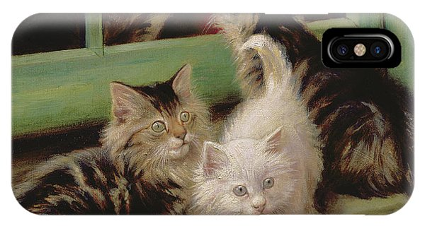 Kittens  IPhone Case