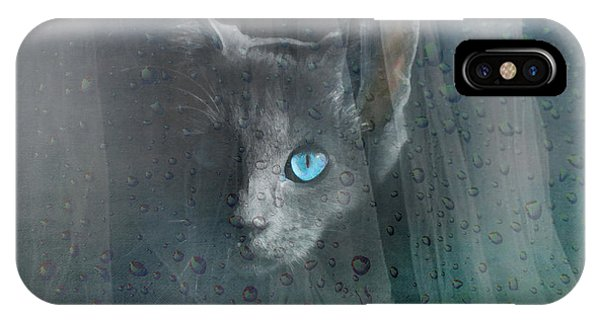 Kitty At The Window IPhone Case