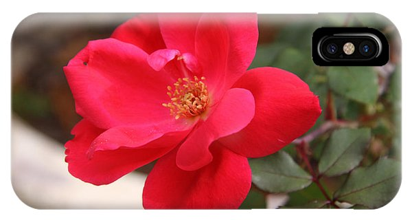 Knockout Red Phone Case by Paul Anderson