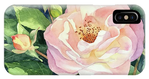 Knockout Rose And Buds IPhone Case