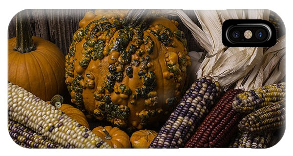 Mottled iPhone Case - Knuklehead Pumpkin And Indian Corn by Garry Gay