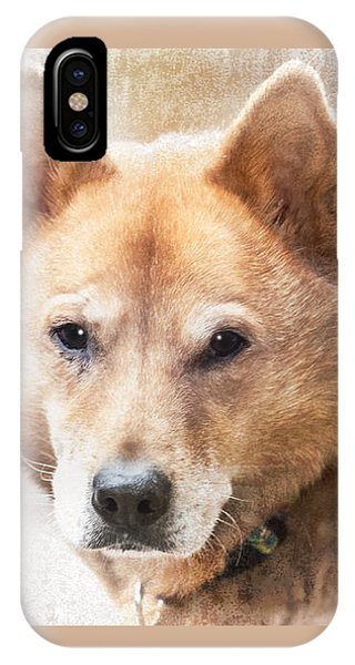 Korean Jindo Portrait IPhone Case