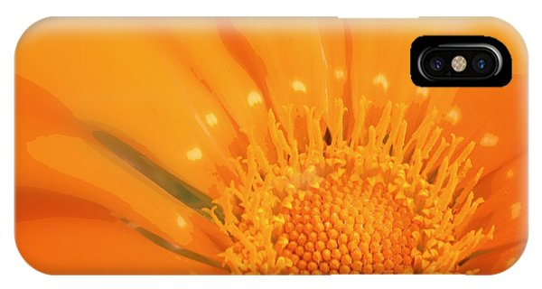 La Fleur D'orange IPhone Case