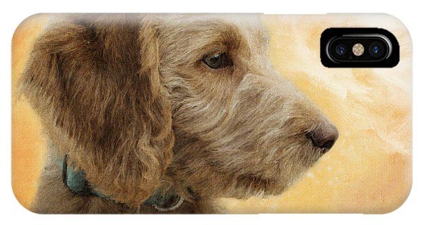 Labradoodle Puppy IPhone Case