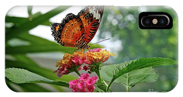 Lacewing Butterfly IPhone Case