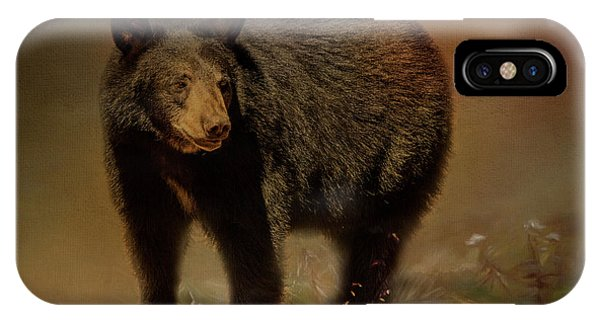 Black Bear In The Fall IPhone Case