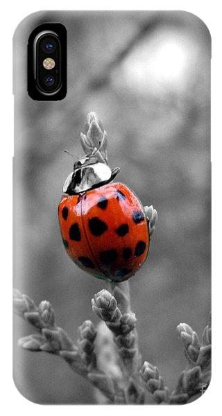 Lady Bug IPhone Case