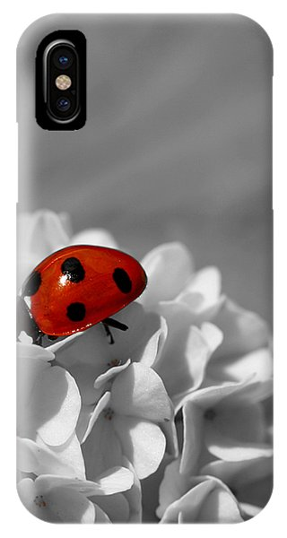 Lady Bug Sc IPhone Case