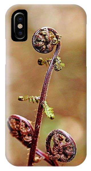 Lady Fern Spirals IPhone Case