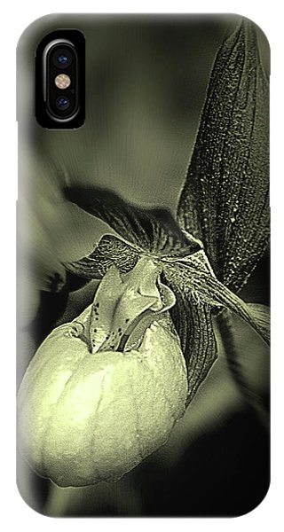 Lady Slipper Orchid Flower IPhone Case