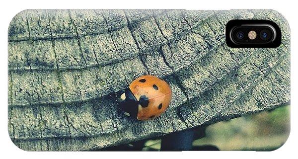Ladybird IPhone Case