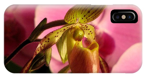 Ladyslipper With Pink IPhone Case