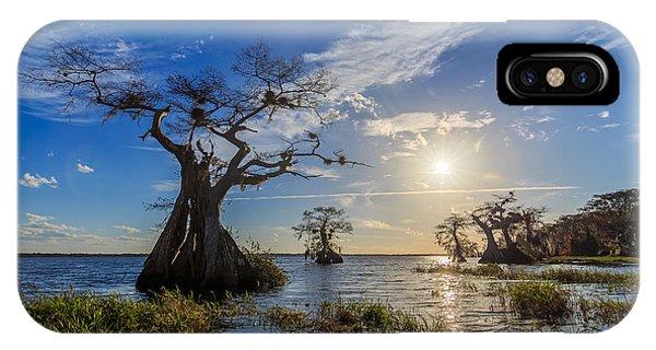 Lake Disston Cypress Paradise IPhone Case