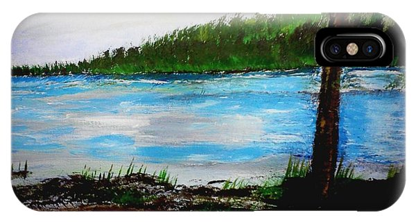 Lake In Virginia The Painting IPhone Case