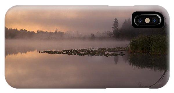 Lake Marsh IPhone Case