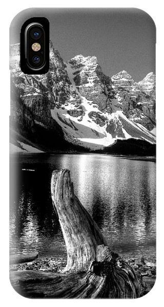 Lake Moraine Drift Wood IPhone Case