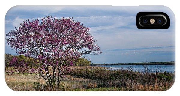 Lake Murray Redbud Tree IPhone Case