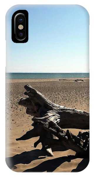Lake Superior Driftwood IPhone Case