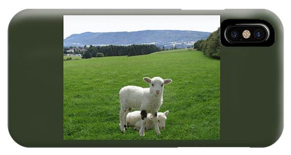 Treeline iPhone Case - Lambs In Pasture by Dominic Yannarella