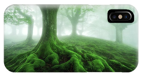 Land Of Roots IPhone Case