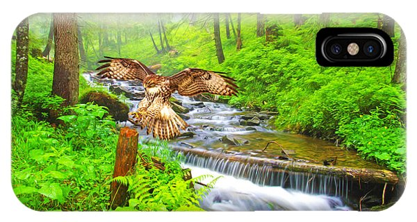 Red Tail Hawk iPhone Case - Landing Gear Down by Laura D Young