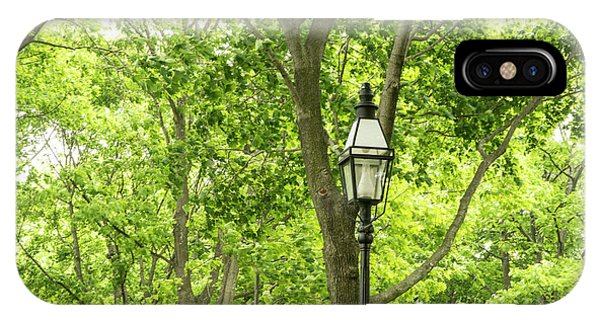 Lanterns Among The Trees IPhone Case