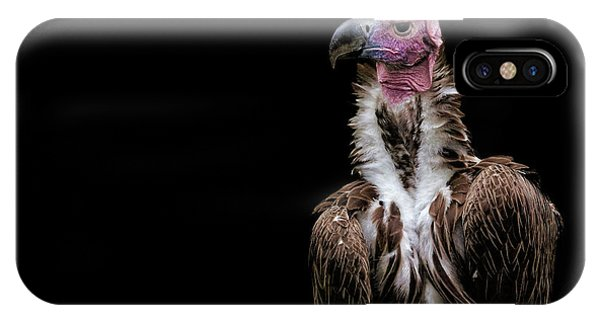 IPhone Case featuring the photograph Lappet-faced Vulture - Africa - African Vulture - Nubian Vulture by Jason Politte