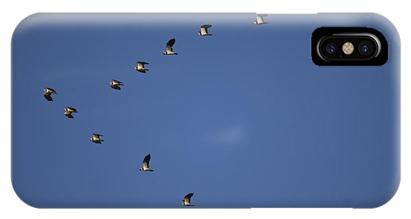 Lapwing Flock IPhone Case