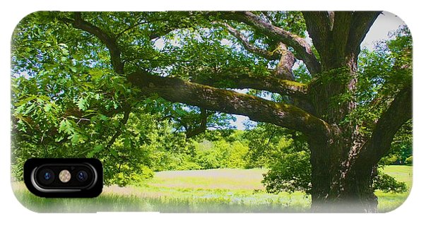 Large Connecticut Oak IPhone Case