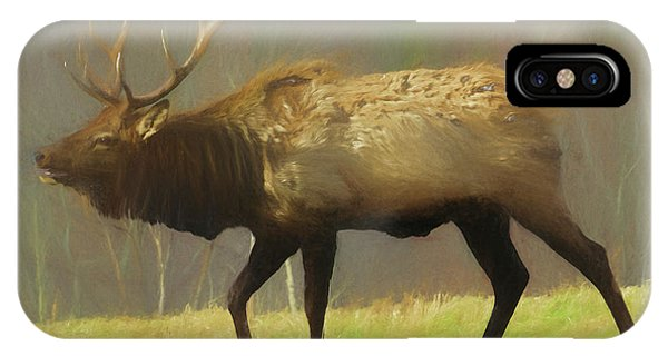 Large Pennsylvania Bull Elk. IPhone Case