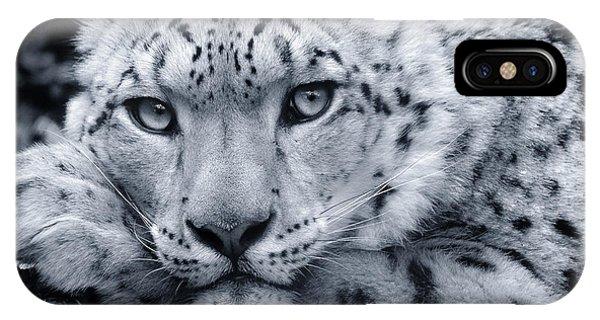 Large Snow Leopard Portrait IPhone Case