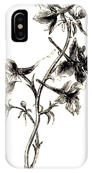 Flora iPhone Case - Larkspur  by English School